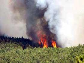 Yangın yazlıklara sıçradı
