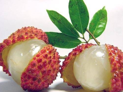 durian.20150330110300.jpg