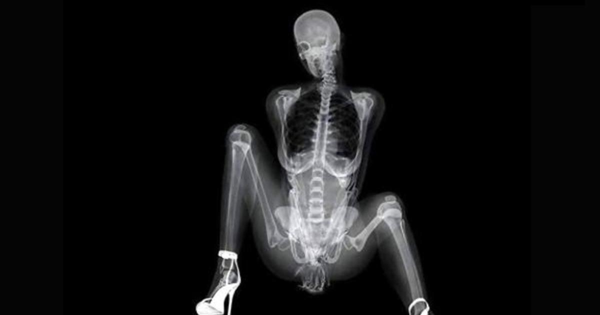 Human body penis images stock photos