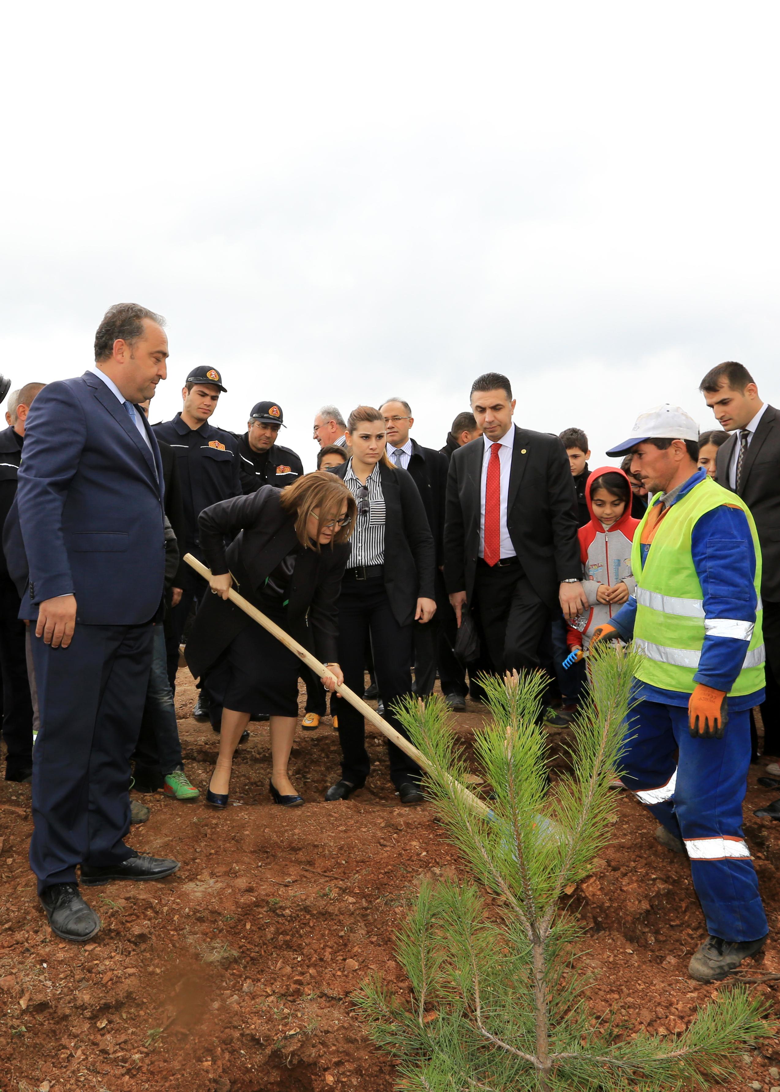 yeni-bina-yapanlar-10-ağaç-dikecek!.20150720100155.jpg